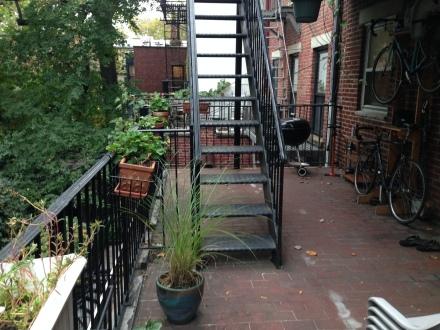 patio - before